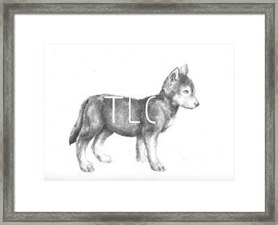 Pup Framed Print
