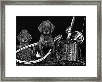 Puppies Are Ready To Go Fish Framed Print by Anderson R Moore