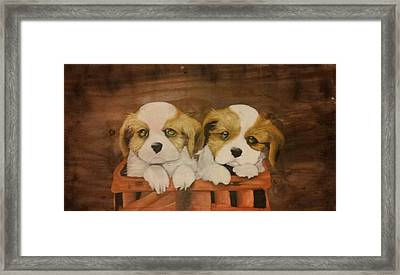 Puppies In A Basket Framed Print by Terrence Lewis