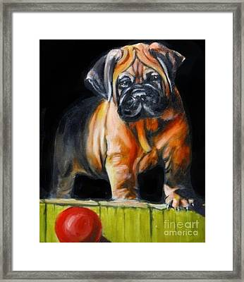 Puppy And Her Red Ball Framed Print