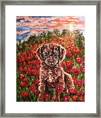 Puppy And Poppies Framed Print