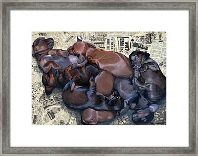 Puppy Breath Framed Print by Lena Quagliato
