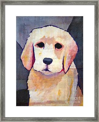 Puppy Dog Framed Print
