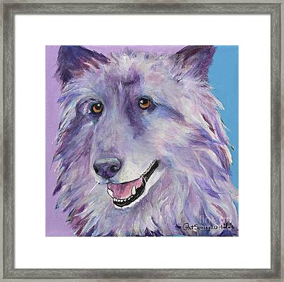 Puppy Dog Framed Print by Pat Saunders-White