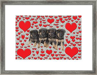 Puppy Love Framed Print by Aimee L Maher Photography and Art Visit ALMGallerydotcom