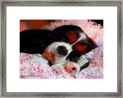 Puppy Love Framed Print by Bruce Nutting