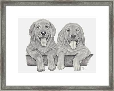 Puppy Love Framed Print by Patricia Hiltz