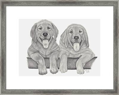 Puppy Love Framed Print by Patricia Hiltz
