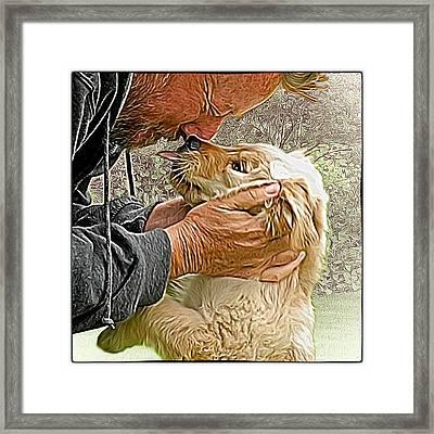 Puppy Love Framed Print by Richard Farrington