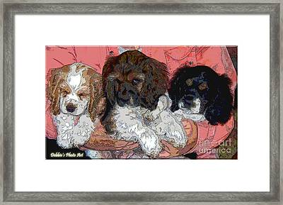 Puppy Love  Sugar         Little Bear And Peanut Framed Print by Debbie Portwood