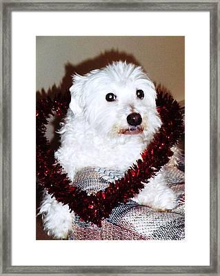 Puppy Love Valentine Framed Print by Eddie Eastwood