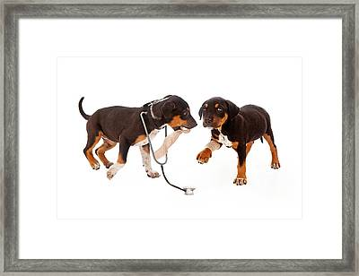 Puppy Veterinarian And Patient Framed Print by Susan Schmitz