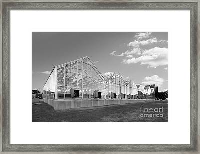 Purdue University Life Science Ranges Framed Print by University Icons