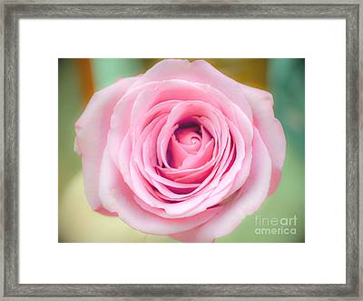 Pure Beauty Framed Print by Renee Barnes