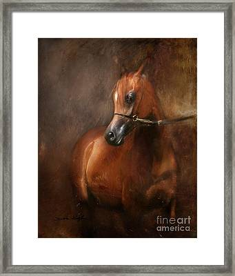 Pure Breed Framed Print