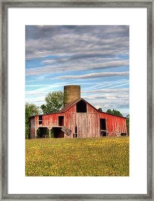 Pure Country II Framed Print