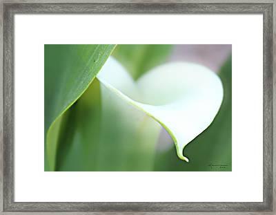 Pure Heart Framed Print by Kume Bryant