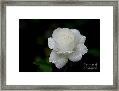 Pure Heaven Framed Print