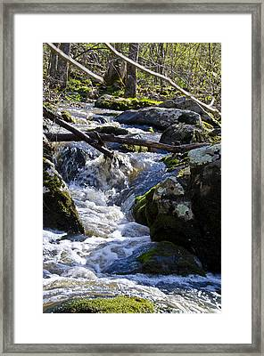 Pure Mountain Stream Framed Print by Bill Cannon