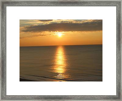 Framed Print featuring the photograph Pure Silk by Judith Morris