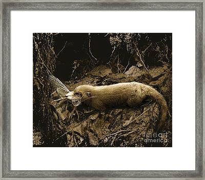 Purgatorius Feeding On A Large Framed Print by Jan Sovak