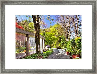 Purifying Walk Framed Print by Eti Reid