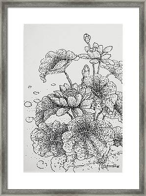 Purity And Beauty Framed Print