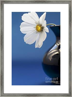 Purity Framed Print by Jan Bickerton