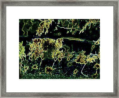 Purkinje Electric Framed Print by Tyler Sloan