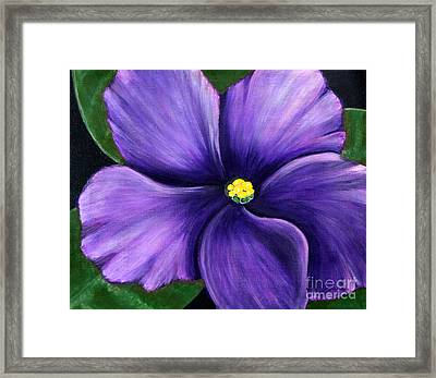Framed Print featuring the painting Purple African Violet by Barbara Griffin
