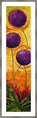 Purple Allium Flowers Framed Print by Paris Wyatt Llanso