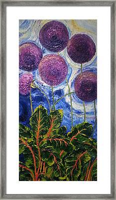 Purple Alliums And Swiss Chard Framed Print by Paris Wyatt Llanso