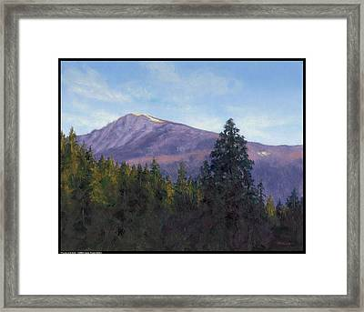 Purple And Gold Framed Print by Diana Moses Botkin