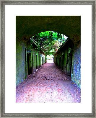 Purple And Green Framed Print by C Lythgo