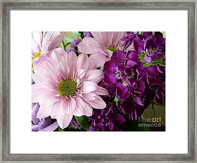Purple And Pink Framed Print by Avis  Noelle