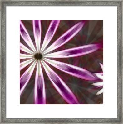 Purple And White Fractal Flower  Framed Print by Gina Lee Manley