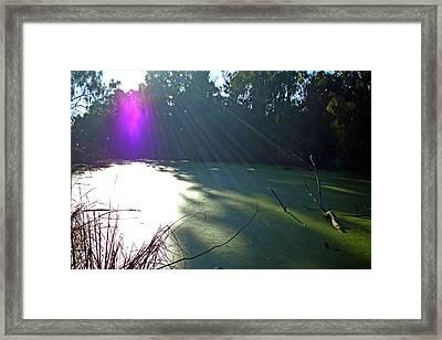 Purple Angel Of Lagoon Framed Print by Phoenix The Moody Artist