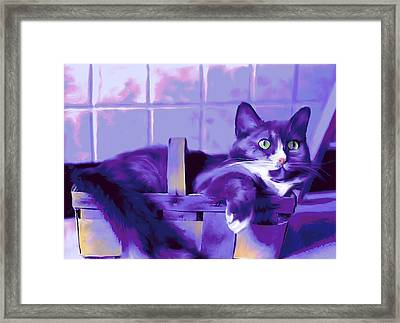 Purple Basket Case Framed Print by Mary Armstrong