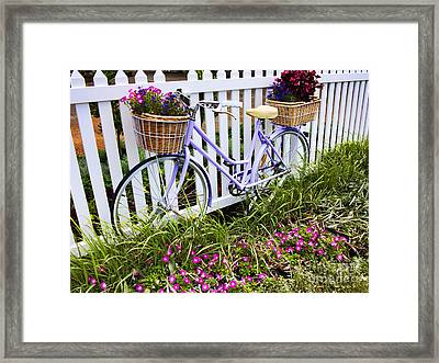 Purple Bicycle And Flowers Framed Print by David Smith