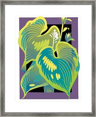 Purple-black Hosta Framed Print