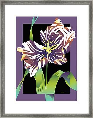 Purple Black Parrot Framed Print