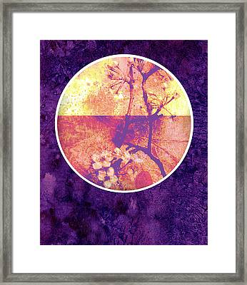 Purple Blossom Framed Print by Ann Powell