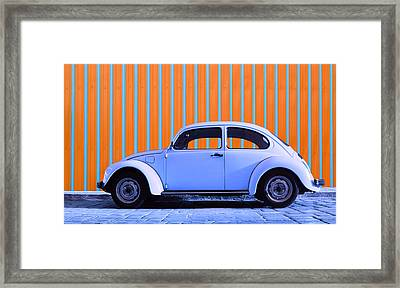 Purple Bug Framed Print by Laura Fasulo