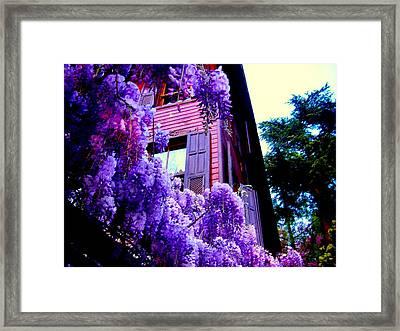 Purple Cheer Framed Print