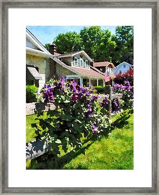 Purple Clematis On Rustic Fence Framed Print by Susan Savad