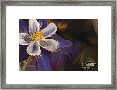 Purple Columbine Framed Print by K Powers Photography