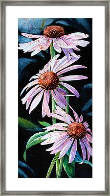 Purple Cone Flowers 1 Framed Print by Hanne Lore Koehler