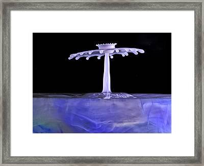 Purple Crown Framed Print by Gemma June