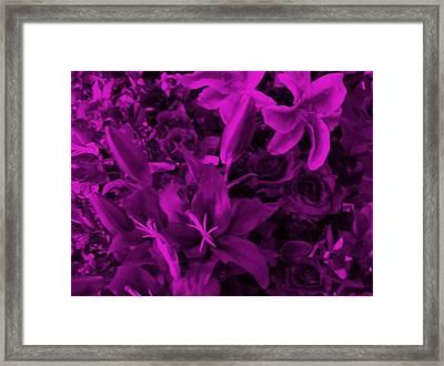 Purple Dreams Framed Print