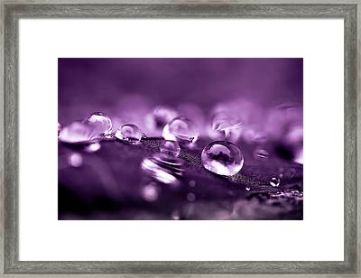 Purple Droplets Framed Print